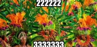 55381518831260